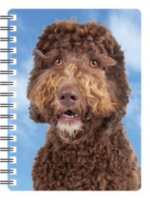 Labradoodle 3D Notebook